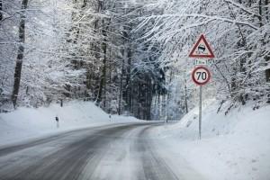 Im Winter kommt es eher zum Wildunfall: Was tun, wenn es kracht?