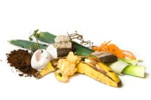 Richtig Müll trennen: Recycling fängt schon beim Biomüll an.