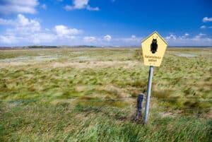 Zelten im Naturschutzgebiet ist prinzipiell untersagt.