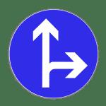 Zeichen 214: Fahrtrichtung geradeaus und rechts