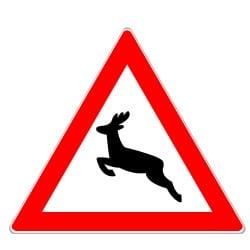 Das Verkehrszeichen für Wildwechsel trägt die Nummer 142.