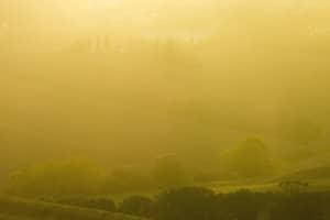 Ob Halogen oder LED: Nebelscheinwerfer dürfen nur unter bestimmten Bedingungen eingeschaltet werden.