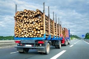 Wie viele Tonnen Zuladung sind beim Lkw erlaubt?