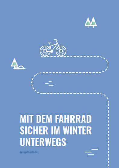 weihnachtsbaum-e-book-bussgeld-info