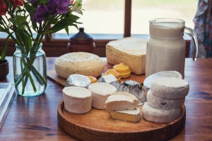 Guter Käse hat seinen Preis: Die Nutzung von einem Blitzerwarner in der Schweiz auch.