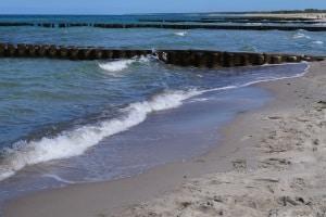 Meist werden Holzbuhnen für diese Art der Küstenschutzanlagen verwendet.