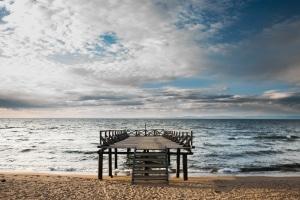 Ob an einem Strand Tiere willkommen sind, sollten Sie vor Ort erfragen.