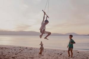 Urlaub mit Hund, Pferd & Co.: Doch sind Tiere am Strand überall willkommen?