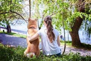 Hundestrand: In Kroatien müssen die Fellnasen dort keine Leine tragen.