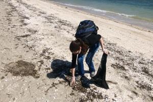 Helfen Sie mit: Müll am Strand sammeln können Sie allein oder z. B. beim NABU, der öfter entsprechende Aktionen anbietet.