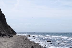Warum sind Strandmuscheln an der Ostsee nicht immer erlaubt?