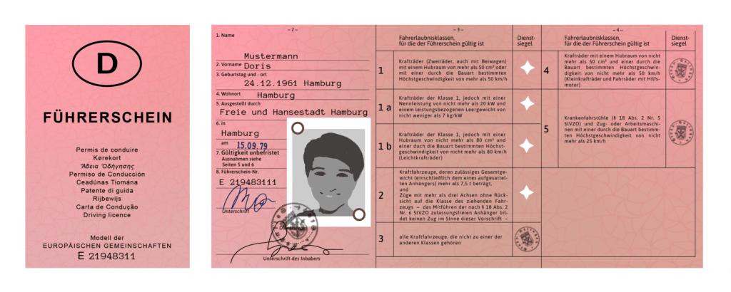 Unsere Grafik zum rosa Führerschein: Was steht im Lappen?