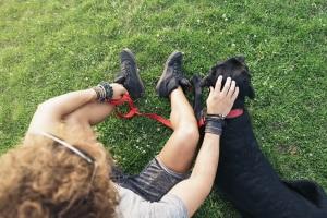 Für Hunde gilt eine Leinenpflicht im Wald immer dann, wenn dies in Landeswaldgesetz bestimmt ist.