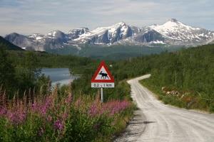 Ein Tempolimit ist in Norwegen auf allen Straßen zu beachten.